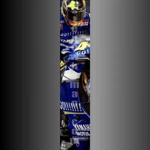 Valentino Rossi GoGo 2005 slimpic